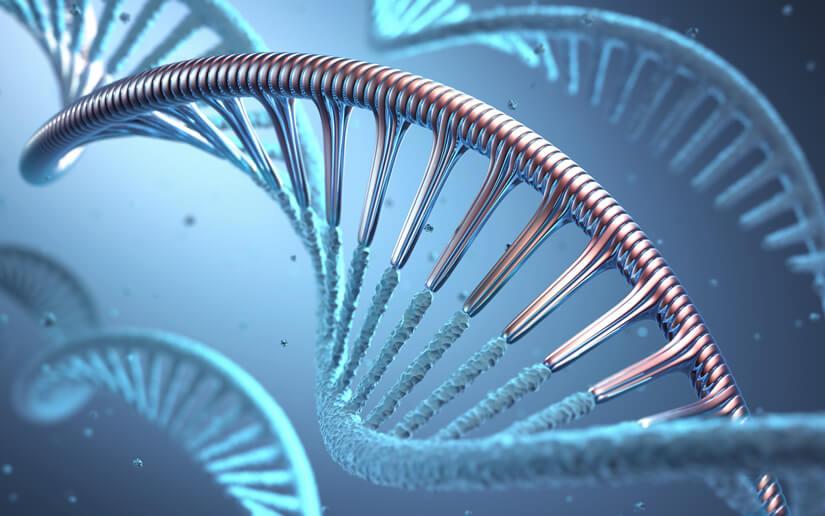 Vaccins à ARN messager, comment ça marche ?